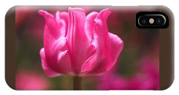 Tulip At Attention IPhone Case