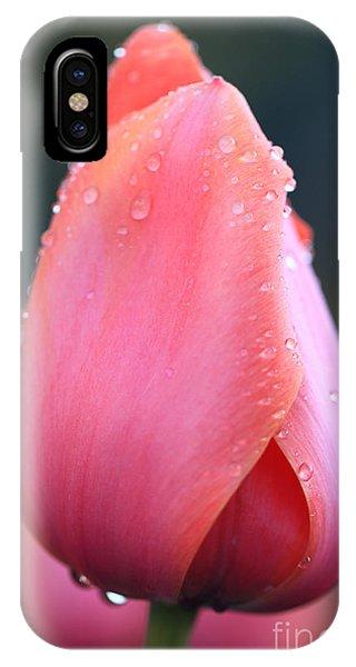 Tulip Darling IPhone Case
