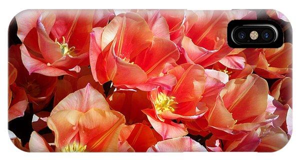 Tulip Festival - 39 IPhone Case