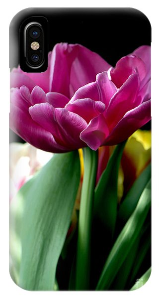 Tulip For Easter IPhone Case