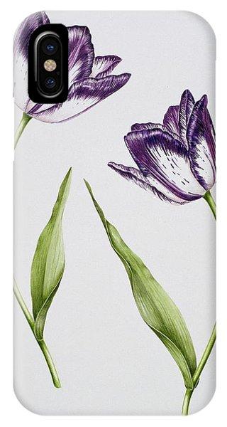 Violet iPhone Case - Tulip Habit De Noce by Sally Crosthwaite