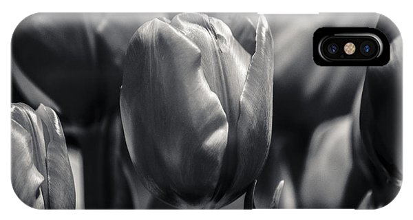 Tulip Hollywood Lighting IPhone Case