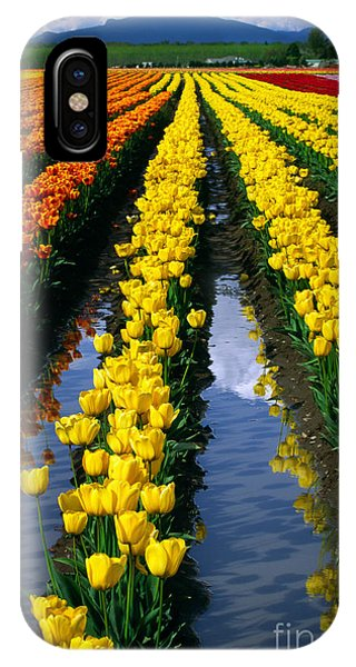 Rural America iPhone Case - Tulip Reflections by Inge Johnsson
