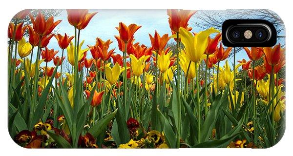 Tulip Time IPhone Case