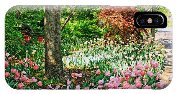 Tulip Trail IPhone Case