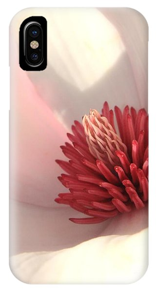 Saucer iPhone Case - Tulip Tree Blossom by Carol Groenen