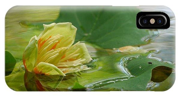 Tulip Tree Flower IPhone Case