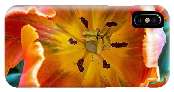 Tulip Two IPhone Case