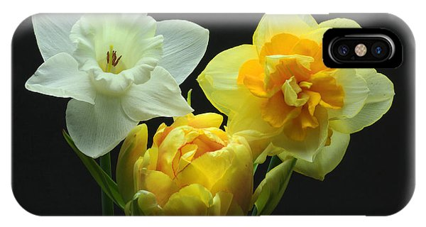 Tulip With Daffodils IPhone Case