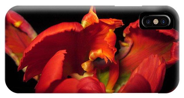 Tulipmelancholy IPhone Case