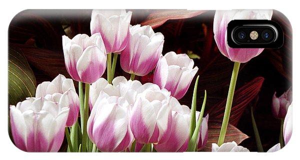 Tulips 2 IPhone Case