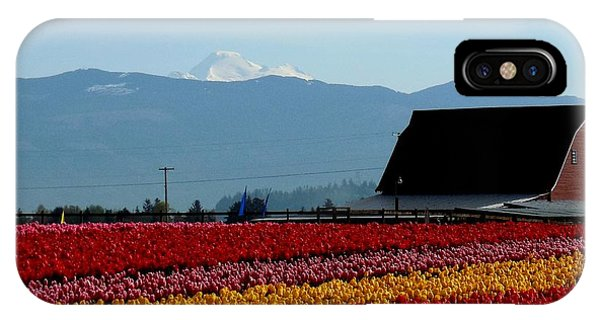Tulips And Barn 2 IPhone Case