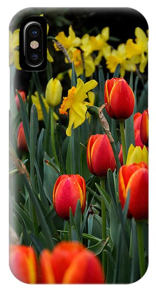 Tulips And Daffodils IPhone Case