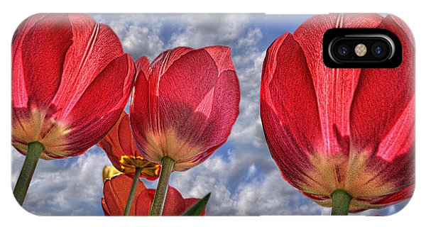 Tulips Are Better Than One IPhone Case