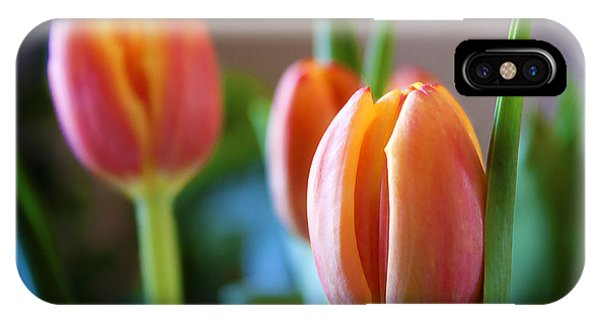 Tulips Artistry IPhone Case