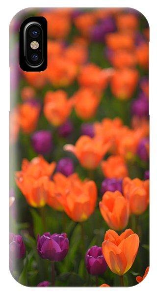 Tulips At Clevelands Botanical Gardens IPhone Case