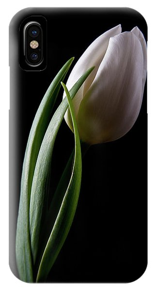 Tulips IIi IPhone Case