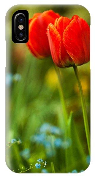 Tulips In Garden IPhone Case