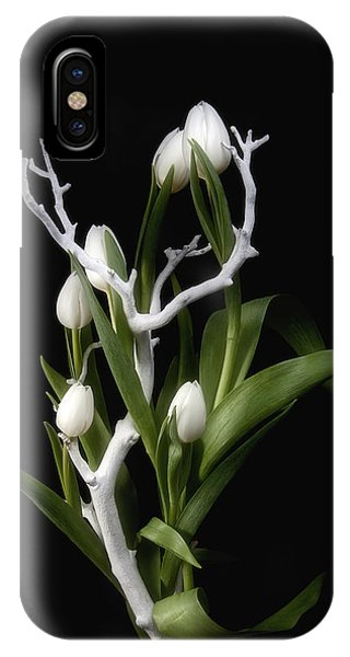 Bloom iPhone Case - Tulips In Tree Branch Still Life by Tom Mc Nemar