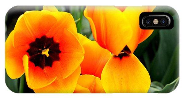 Tulips... IPhone Case