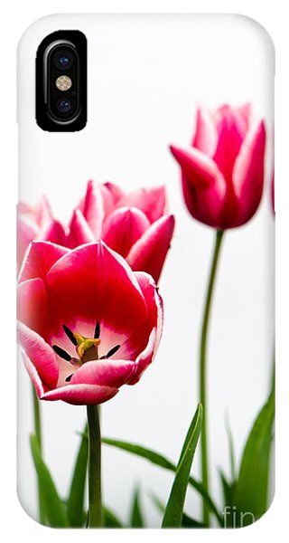 Tulips Say Hello IPhone Case