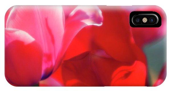 Hybrid iPhone Case - Tulips (tulipa Hybrid) by Maria Mosolova/science Photo Library
