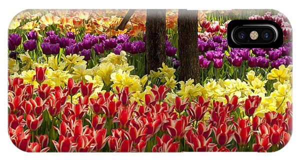 Tulips Tulips Tulips IPhone Case