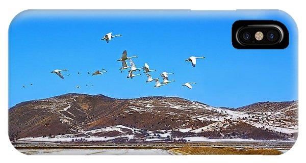 Tundra Swans Take Flight  IPhone Case
