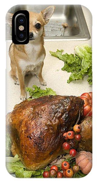 Turkey And Dog IPhone Case