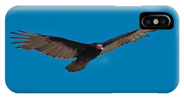 Wakulla iPhone Case - Turkey Vulture by Rich Leighton