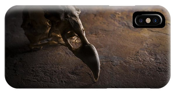 Turkey Vulture Skull On Slate IPhone Case