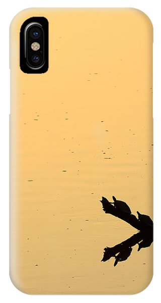 Turtle Art IPhone Case