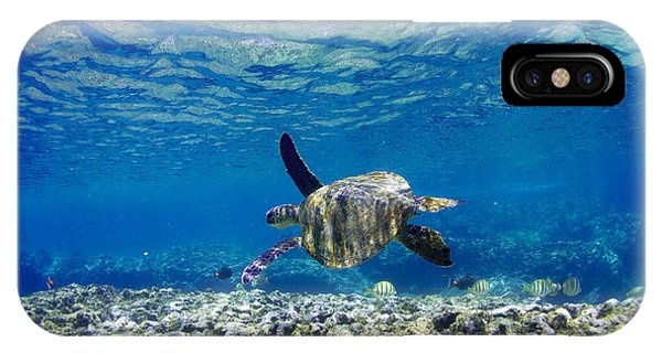 Turtle Cruise IPhone Case