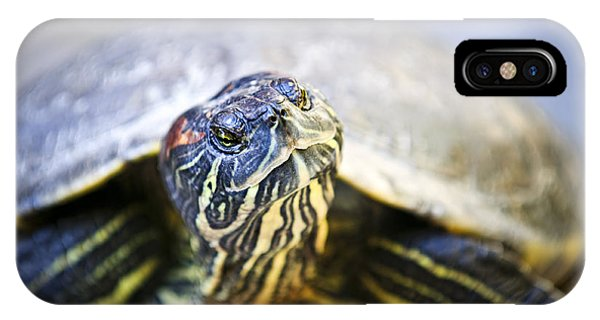 Pet iPhone Case - Turtle by Elena Elisseeva