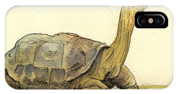 Reptiles iPhone Case - Turtle Galapagos by Juan  Bosco