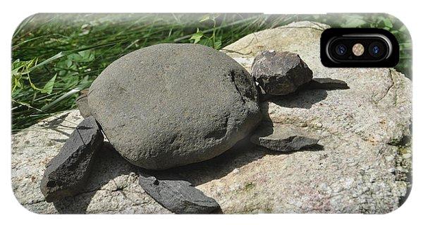Turtle's Rock IPhone Case