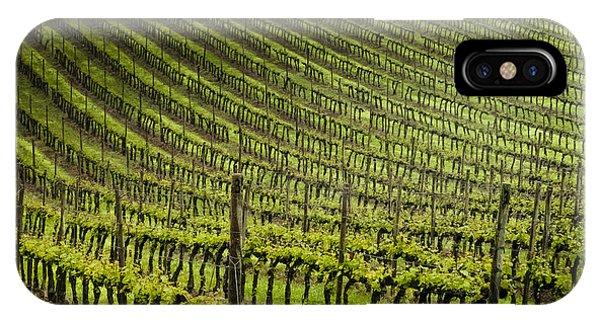 Tuscan Vineyard Series 1 IPhone Case