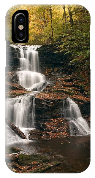 Tuscarora Under Newfallen Leaves IPhone Case