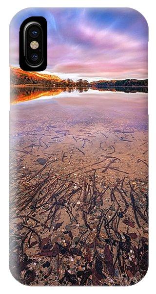 Loch Ard iPhone Case - Twigs And Leaves  by John Farnan