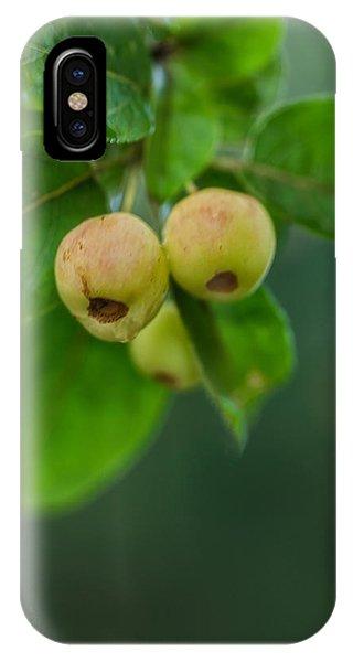 Twin Berries IPhone Case