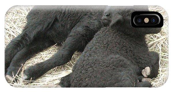 Twin Black Lambs IPhone Case