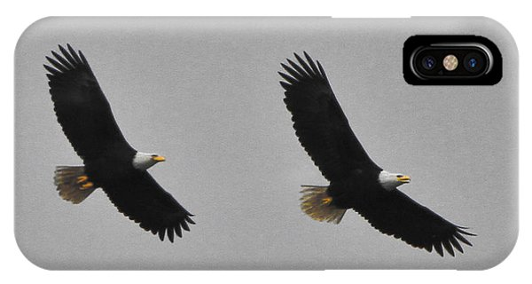 Twin Eagles In Flight IPhone Case