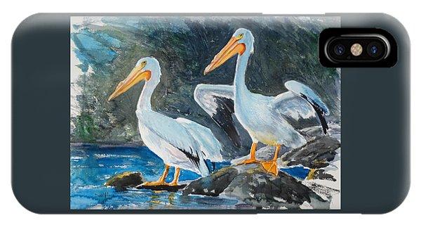 Da208 Twin Pelicans By Daniel Adams IPhone Case