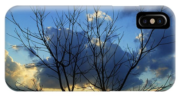 Twin Trees IPhone Case