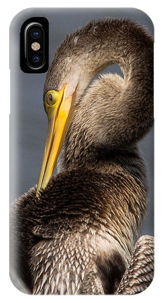 Twisted Bird IPhone Case