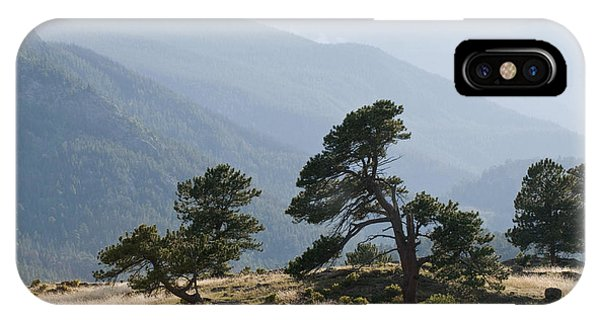 Twisted Pines IPhone Case