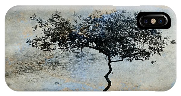 Tree iPhone Case - Twisted Tree by David Ridley