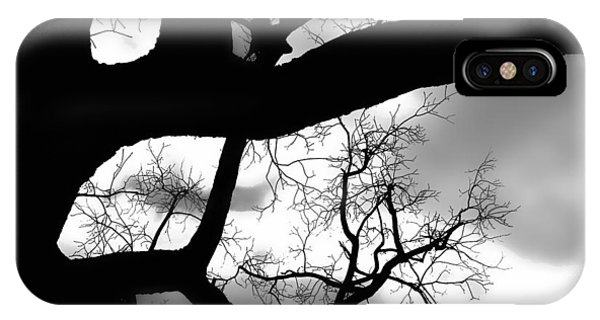Twisty Tree Silhouette IPhone Case