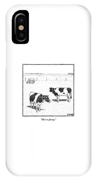 New Jersey iPhone Case - Two Spotted Cows Looking At A Jersey Cow by Matthew Diffee