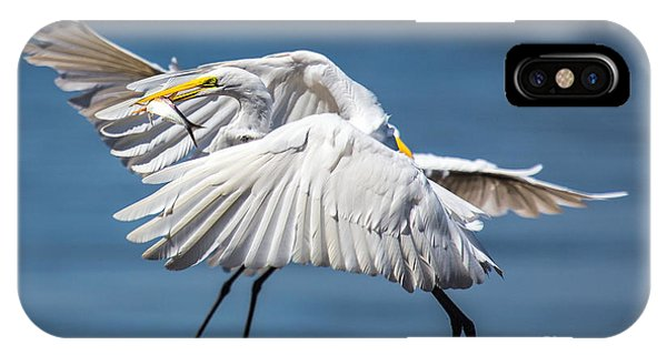 Two Birds And One Fish IPhone Case
